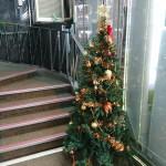 2016クリスマス装飾|ツリー編☆