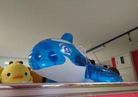 ゲーセンで癒やしの青を追う【約70店】